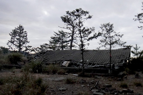 大雪山林道上傾頹的道班房遺跡,圖片攝影:徐嘉君。