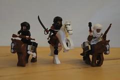 Sinai Desert Riders