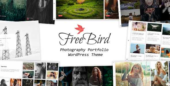 FreeBird WordPress Theme free download