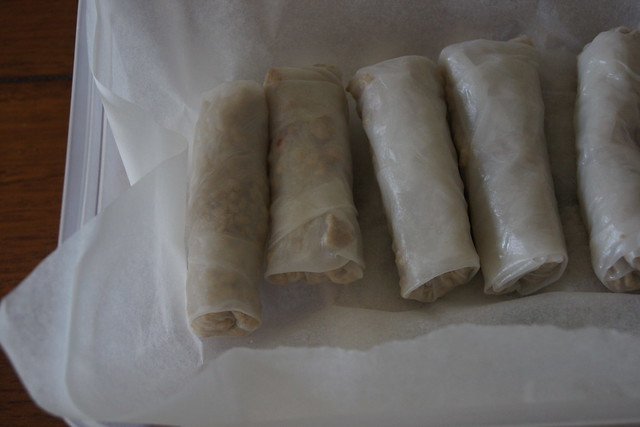 homemade chicken spring rolls DSC08642