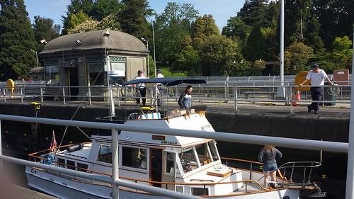 Ballard Locks 6
