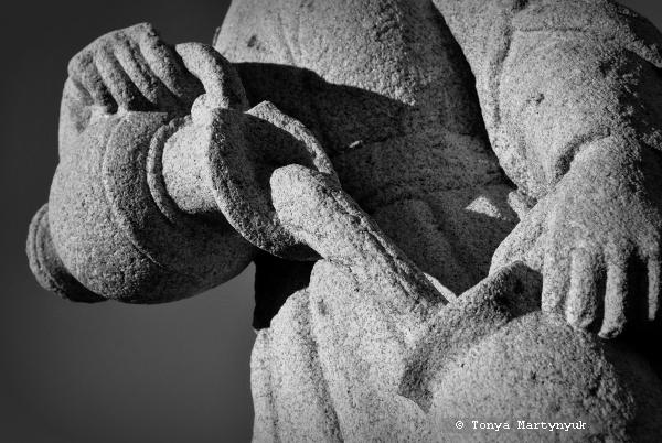 10 - Епископский сад - Каштелу Бранку - Португалия