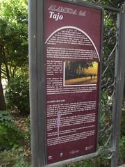 Photo of Alameda del Tajo red plaque