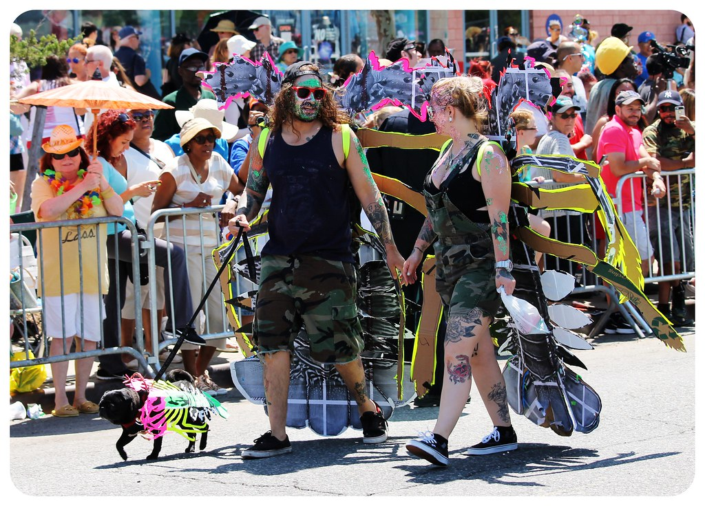coney island mermaid parade 2014  doggie