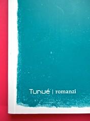Romanzi, collana di Tunué edizioni. Progetto grafico di Tomomot; impaginazione di TunuéLab. Copertina [Barison] (part.), 4