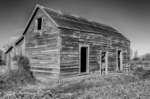 red newzealand blackandwhite plants architecture rural landscape countryside rustic rusty style crops niksoftware