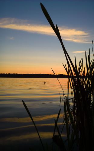windows sunset sun lake mobile espoo nokia raw phone sundown 1020 järvi auringonlasku carlzeiss aurinko dng lumia pitkäjärvi mobilephotography laaksolahti pureview iphoneography lumiagraphy lumia1020