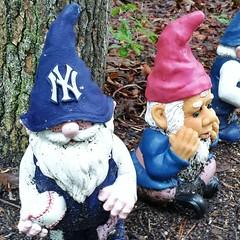 garden gnome, lawn ornament, blue, statue,