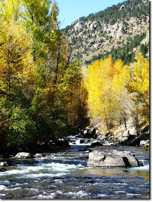 The color of Fall along Clear Creek 11
