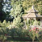 Woodland Park Rose Garden