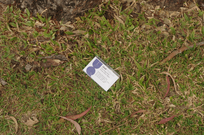 "From the series ""Congratulations UQ Graduates...but please take your rubbish away too."""