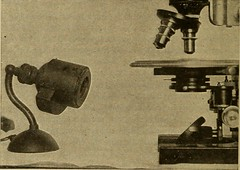 "Image from page 135 of ""Medical diagnosis for the student and practitioner"" (1922)"