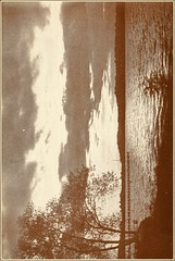 """Image from page 90 of """"Poems of life in the country and by the sea"""" (1914)"""