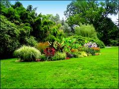A Day in the Botanic Garden