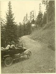"""Image from page 18 of """"The United States Forest service"""" (1922)"""