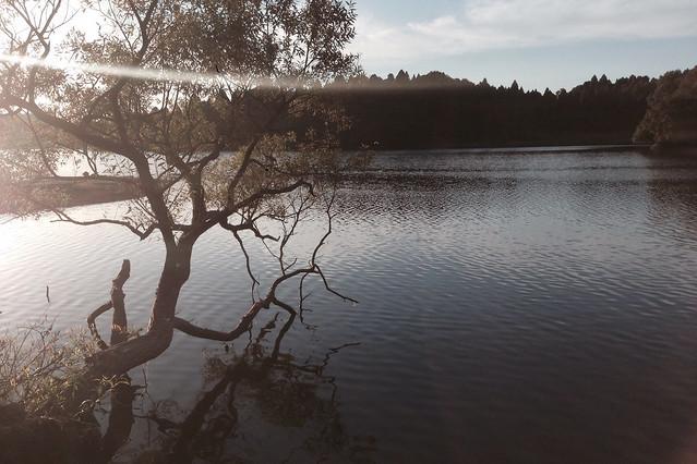 雄蛇ヶ池でジョギング07