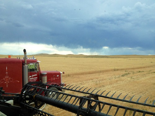 Z Crew: Storms Moving In