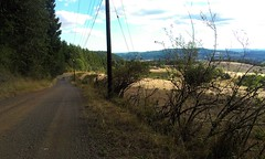 Kings Grade. A secret route from the Yamhill Valley over Chehalem Ridge into the Tualatin Valley. Mostly gravel, with some brutal sections. I walked the last 10 minutes.