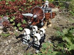 Patrolling the Cretaceous