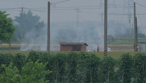 燃燒稻草影響空氣品質及人體健康