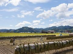 飛驒古川町里山風景。(圖片來源:飛騨里山オフィス/ Hida Satoyama Office)