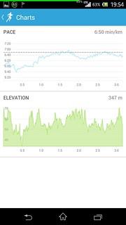 20140820_RunKeeper(Running)charts