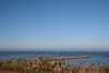 20140827_4872 Werribee South Marina breakwater