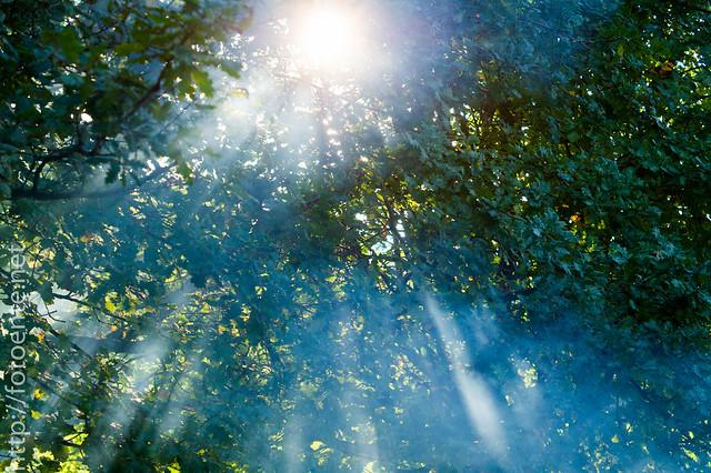Sonnenrauch