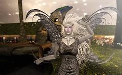 Winter Queen Watches