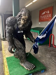 Even the local Sasquatch is a fan of the Seahawks!