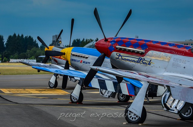 P-51 Mustang Line Up