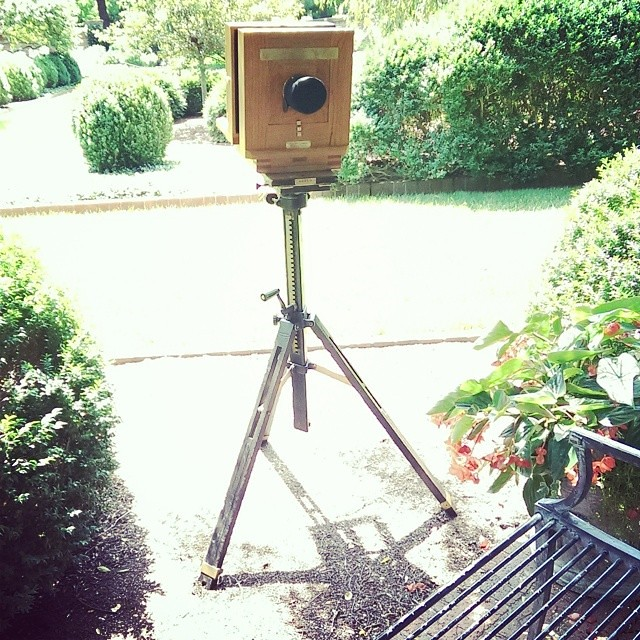 A lovely day for some wet plate collodion #photography, no?
