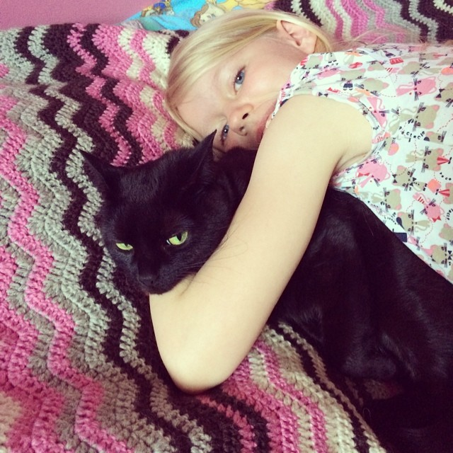 Cat hugs. The cat just woke up so it is not as unhappy as it looks like.