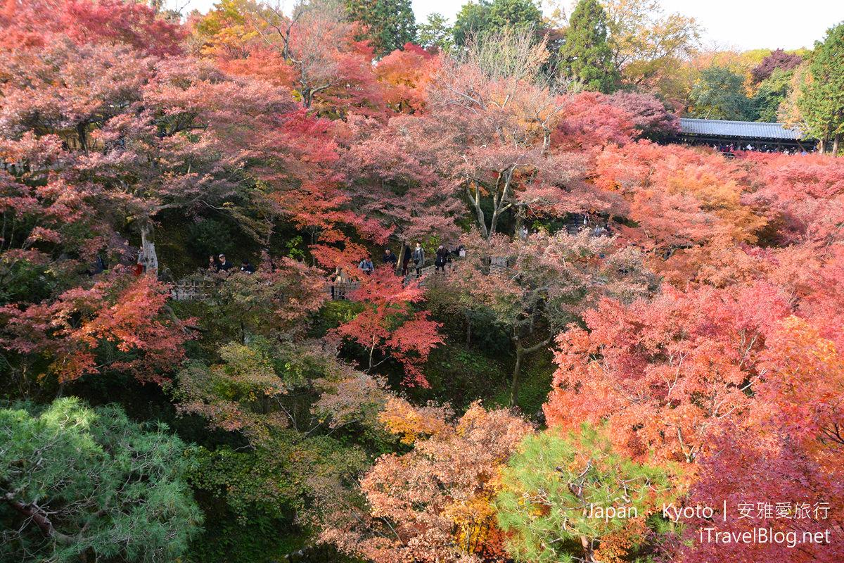 京都 东福寺24