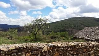 Sierranegra