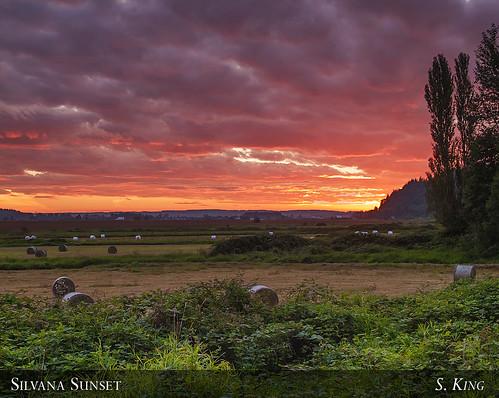 county sunset washington stanwood snohomish silvana sking5000