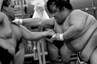 Sumo wrestler training in the morning No.6.