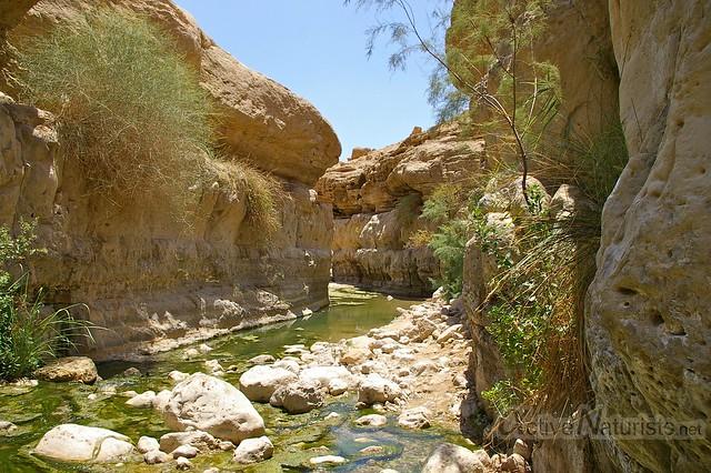 view 0002 Nahal Arugot, Dead Sea, Israel