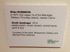'Exotic Landscapes' by Brian Robinson, on display at Cairns Regional Gallery as part of the  Cairns Indigenous Art Fair 2014