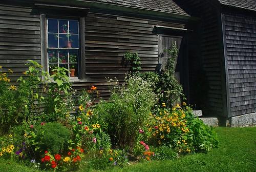 Christina's Garden