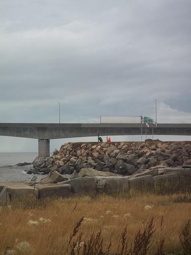 Looking at the Confederation Bridge (6)
