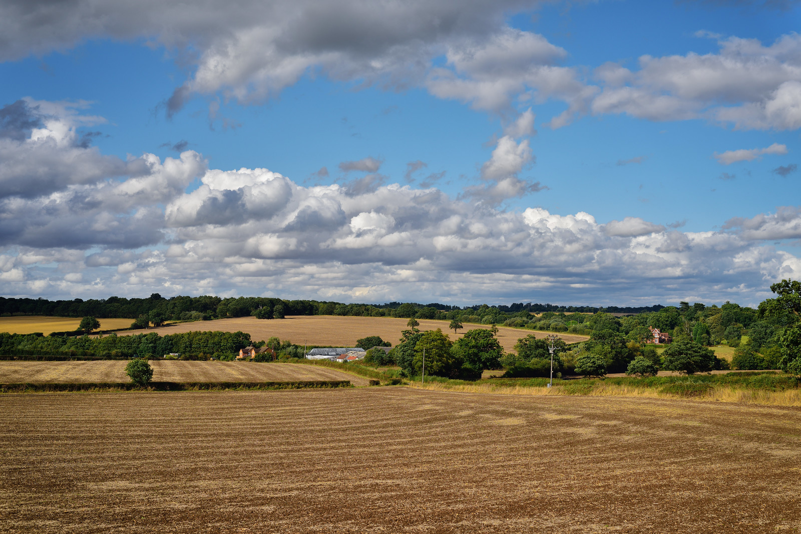 Over the fields to Rectory Farm