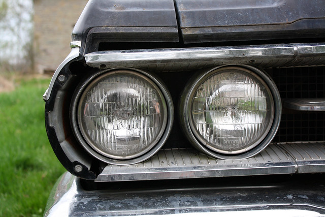 Wildcat Headlights