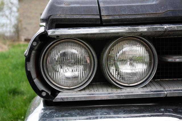 Wildcat Headlights