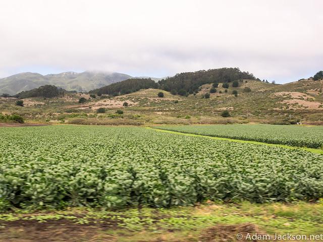 Pacific Coast Highway / Pacifica