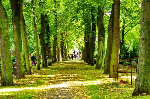 friedhof berlin cemetery germany deutschland allemagne cimetière boxhagenerstrase georgenparochialfriedhofiv