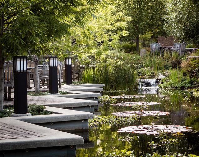 pond at Innovation Place