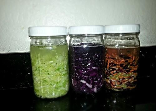 sauerkraut (1st batch)