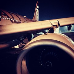 Etihad Airbus A330 by night #InAbuDhabi
