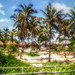 Small photo of Inhaca Islands, Mozambique
